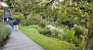 The Streissguth Gardens on north Capitol Hill are an easy trek down from 10th Avenue East and a big climb up from Lakeview Boulevard East.