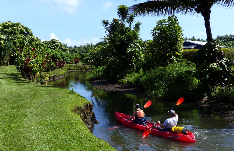 The launching stream at Kayak Hanalei feeds into the lazy Hanalei River. (Brian J. Cantwell / The Seattle Times)