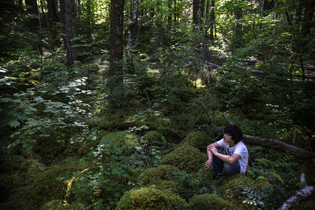 Fifth-grader Oswaldo Jimenez spends a required 10 minutes alone and silent away from everyone in his trail group so he can concentrate on the sounds of nature around him in North Cascades National Park. (Steve Ringman/The Seattle Times)