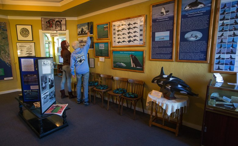 Rachel Haight (left) and Jill Hein, volunteers at the Langley Whale Center in downtown Langley, discuss one of the displays in the museum. Their new location just opened at 117 Anthes St.  (Ellen M. Banner/The Seattle Times)