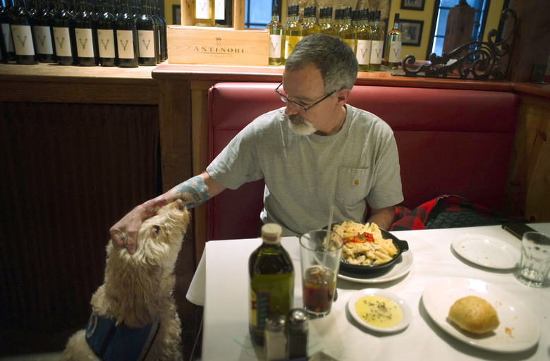 """In this Monday, Feb. 8, 2016 photo, Sean McDonough eats lunch at the Macaroni Grill in South Portland, Maine, with his service dog Bruno at his side. McDonough suffered brain injuries in a car crash in 2008 and depends on Bruno to keep him calm in public settings. When McDonough is stressed, Bruno will lean against him. """"Businesses are so fed up with the fakes that those of us with legitimate service dogs are being scrutinized and discriminated against,"""" McDonough said. (AP Photo/Tom Bell)"""