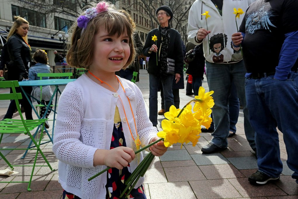 Rue leaves a string of spring celebrants in her wake as she distributes the free daffodils. (Greg Gilbert/The Seattle Times)