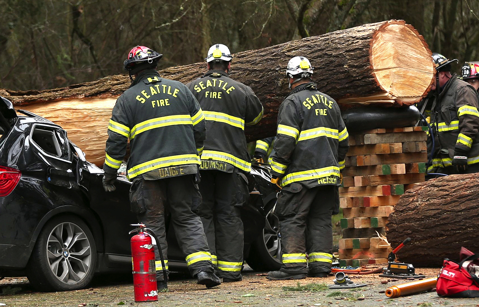 Seattle Fire and emergency crews work to remove a tree that killed a woman when it fell on her car in Seward Park as a heavy storm of high winds and rain rolls into Western Washington Sunday March 13, 2016.