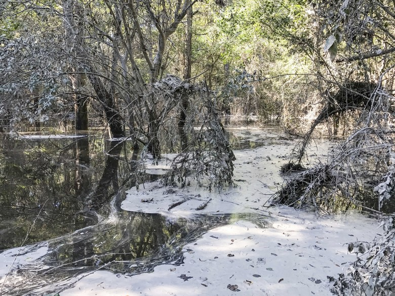 This Monday, Oct. 17, 2016, photo shows coal ash floating on the Neuse River in Goldsboro, N.C. Conservationists and regulators are at odds over how much coal ash was swept away by flooding during Hurricane Matthew – state inspectors say it would fit in the bed of a pickup truck while Waterkeeper Alliance, a watchdog group, argues it's a much larger spill. (Peter Harrison/Waterkeeper Alliance via AP)