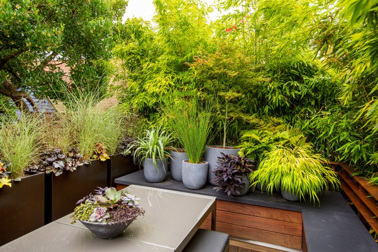 """The """"cityscape"""" at the dining-room end of the deck features year-round grasses, rushes, ferns and a small maple tree in a cluster of gray urns. The dining table is from Crate and Barrel. (Mike Siegel/The Seattle Times)"""