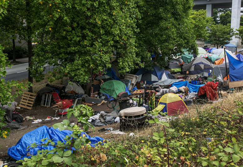 Tents have multiplied in a grassy area near Royal Brougham Way and Airport Way in the Sodo neighborhood of Seattle. (Bettina Hansen/The Seattle Times)