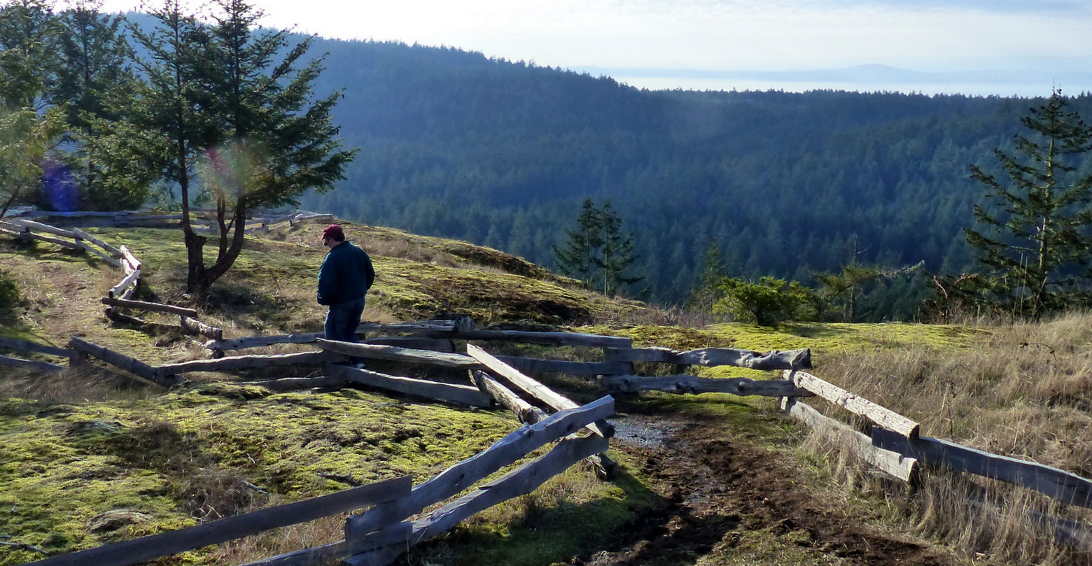 Worth the trip: Spy San Juan whales and sample what's new