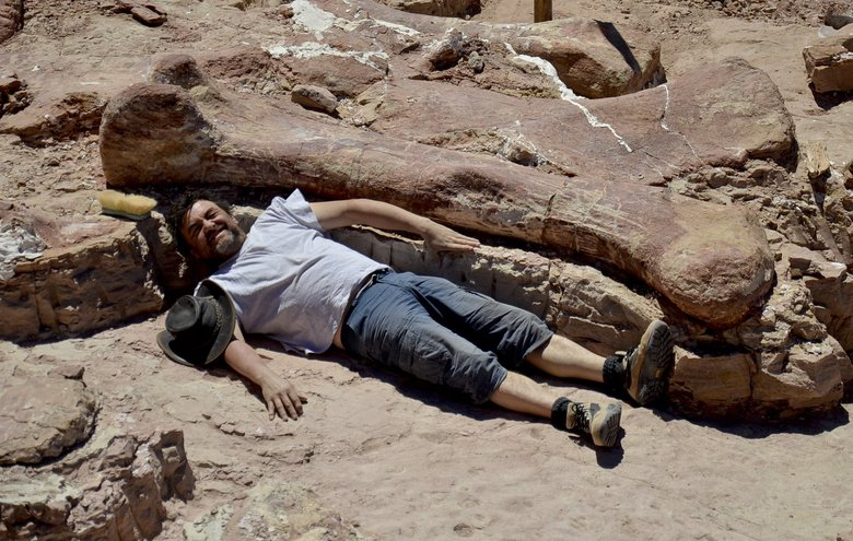 Spanish paleontologist Jose Ignacio Canudo lies alongside a sauropod dinosaur femur, believed to be the largest in the world, in Trelew, Argentina. This photo from January was released last week by the Museo Paletontolgico Egidio Feruglio.