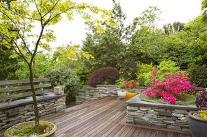Dry stacked-stone walls retain the slope, add to the naturalistic feel of the hillside and create beds for the few ornamental plants in the garden.