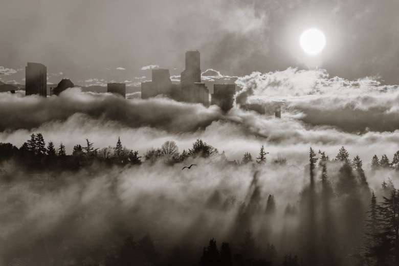 "Photographer: Tom Schonhoff,  Seattle. Photo taken: Dec. 14, 2014. Magnolia, looking toward the downtown skyline. Photographer's description: ""On foggy winter mornings, early light mixes with rapidly shifting fog to reveal Seattle in surprising ways. I gave up the iconic Space Needle and ferry boats to give focus to the tree shadows slicing through the fog. Black and white lets the viewer concentrate on the textures and contrasts, which are really the subject of the image."" Expert says: ""I very much enjoy a good black and white photograph and this is one of them. I love how the light 'slices' through the fog and the trees. We definitely get to concentrate on the softness of the fog and the crisp rigid darkness of the trees and industrial buildings. And that bird's silhouette is perfect.  A tip: Try cropping from the left just to the first building, and from the top, just above the sun. My eye kept wandering to the flat sky and by slightly cropping we direct the focus to the subject of the image. "" — Katie G. Cotterill, Seattle Times photo staff"