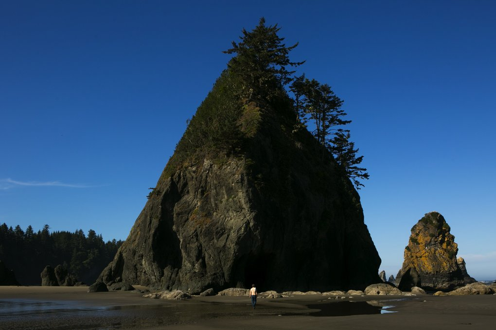 Sea stacks rise at Point of the Arches by Shi Shi Beach on the Olympic Peninsula. (Bettina Hansen/The Seattle Times)