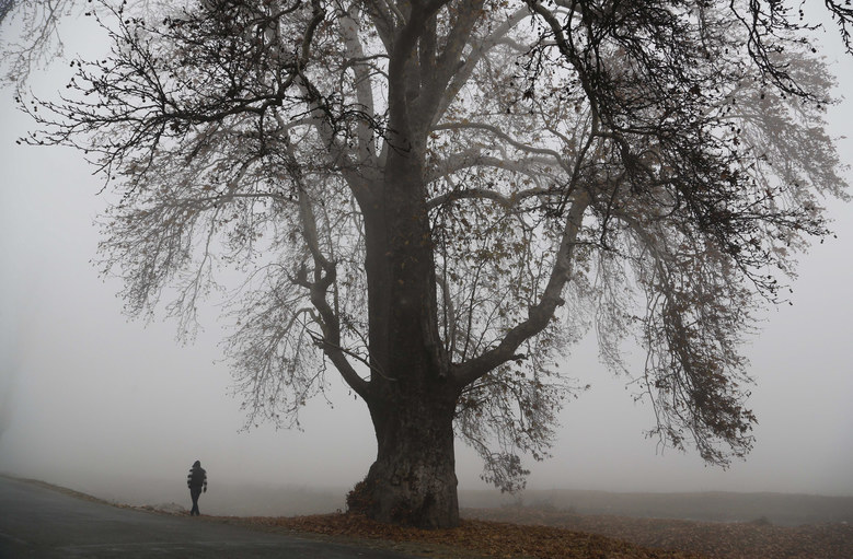 A Kashmiri man walks surrounded by a dense fog on a cold morning on the outskirts Srinagar, Indian controlled Kashmir, Monday, Nov. 23, 2015. The Indian-controlled Kashmir region is experiencing cold conditions after the Himalayan Mountains received snowfall in the past few days. (AP Photo/Mukhtar Khan)