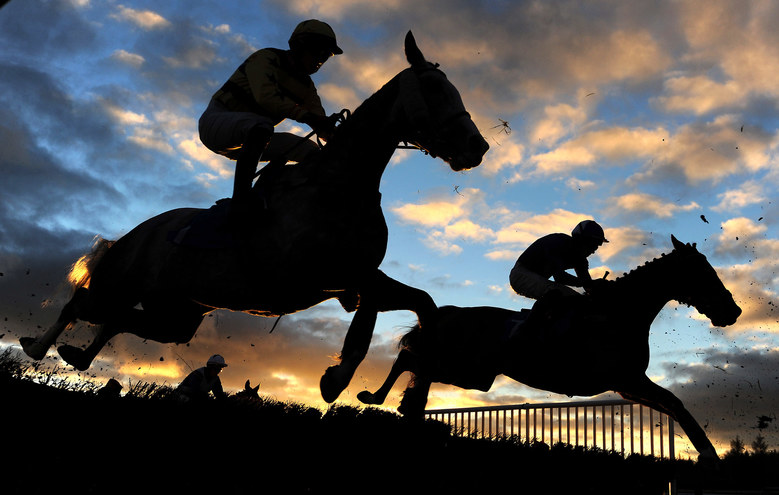 Runners take a flight during the Higos Thatch Property Insurance Conditional Jockeys Handicap Hurdle at Exeter Racecourse on November 22, 2015 in Exeter, England.  (Photo by Harry Trump/Getty Images)