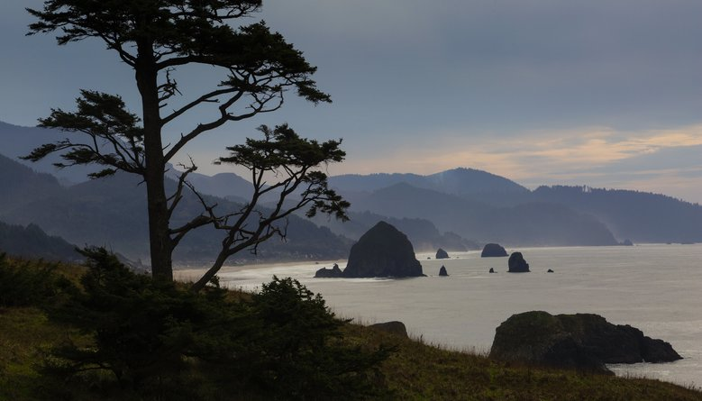 In a serene view from Ecola State Park, Haystack Rock stands like a sentinel.  (Ellen M. Banner/The Seattle Times)