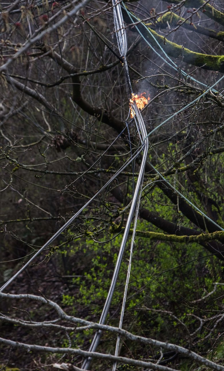 A small fire burns Thursday on the wires and power pole brought down by a tree felled by wind on 26th Avenue East and East Helen Street near the Washington Park Arboretum.  (Steve Ringman / The Seattle Times)