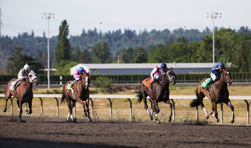 O B Harbor, ridden by Jose Zunino leads the pack through the final stretch, as Stryker PhD, far left, powers past Prime Engine to finish third in the Budweiser Stakes race. (Lindsey Wasson / The Seattle Times)