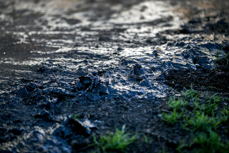 A sludge mixture covers the ground outside of a digester structure at the West Point Treatment Plant on Wednesday. The sludge spilled over the edge of the digester when pumps failed earlier this month. (Johnny Andrews/The Seattle Times)