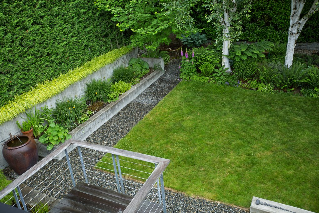 The clean lines of the back garden are delineated with gravel pathways, low concrete walls, hedging and a rectangle of lawn. (Mike Siegel/The Seattle Times)