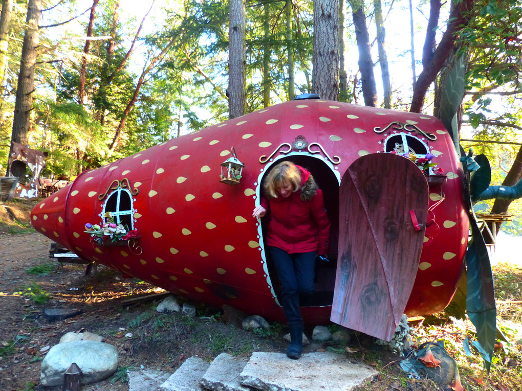 A visitor climbs out of a giant metal strawberry, one of local metal artist Kevin Roth's sculptures situated along Westside Road on San Juan Island. Roth unveils a new sculpture every year at the San Juan County Fair. (Brian J. Cantwell / The Seattle Times)