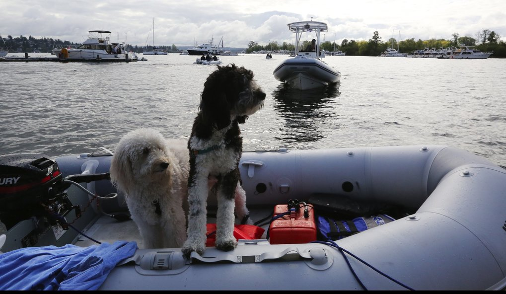 Lucy, left, and Stella wait for their ride to the log boom to watch the Opening Day races starting on Lake Washington and then through the Montlake Cut for the 31st annual Windermere Cup championships, challenged by China.  (Alan Berner / The Seattle Times)