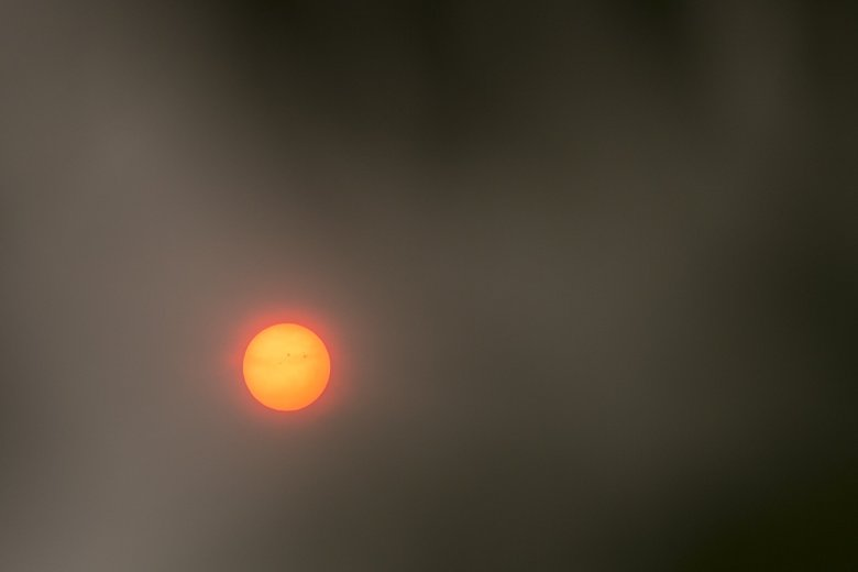 The sun appears as a distinct amber ball Tuesday from wildfire smoke in the atmosphere over the Seattle area.  (Bettina Hansen / The Seattle Times)