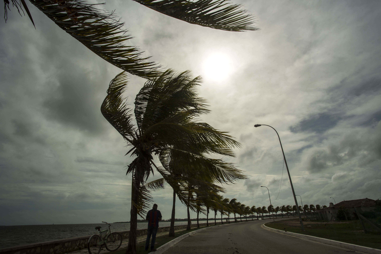 Winds brought by Hurricane Irma blow palm trees lining the seawall in Caibarien, Cuba, Friday, Sept. 8, 2017. Cuba evacuated tourists from beachside resorts after Hurricane Irma left thousands homeless on a devastated string of Caribbean islands and spun toward Florida for what could be a catastrophic blow this weekend. (AP Photo/Desmond Boylan)