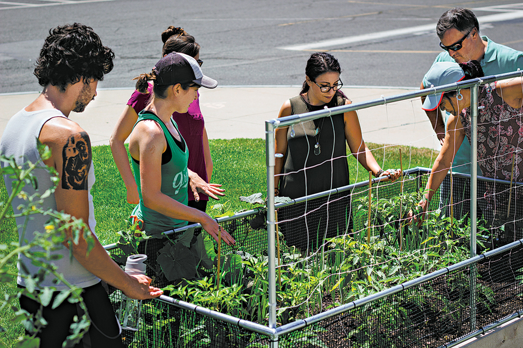 Green City Growers Director of Horticulture Laura Feddersen, second from the left, teaches garden fundamentals to participants at the employee wellness garden at Hood Park in Charlestown, Massachusetts. (Maureen White / Garden City Growers via AP)