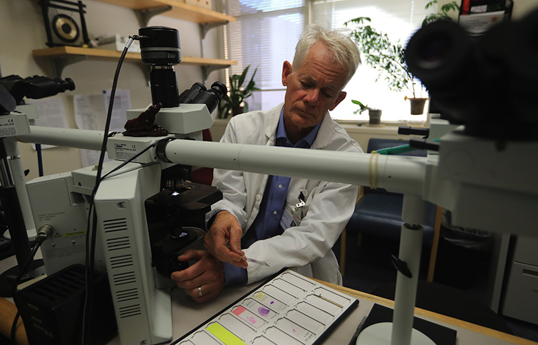 "Dr. Hannes Vogel looks at brain tissue slides in his lab in Stanford, Calif., Oct. 25, 2017. The neuropathologist will be looking for physical abnormalities in the brain of Stephen Paddock, the Las Vegas gunman. Even though the examination is unlikely to answer the mystery of the mass killing, Vogel said, ""all these speculations out there will be put to rest, I think."" (Jim Wilson/The New York Times)"