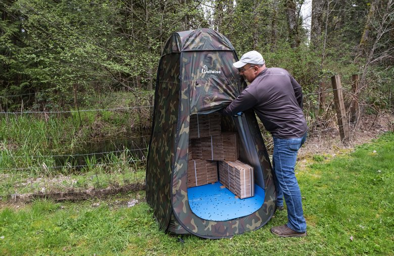 Rent Mason Bees owner Jim Watts uses an outdoor blind for housing his bees; it keeps their habitat at a healthy temperature.  (Dean Rutz/The Seattle Times)