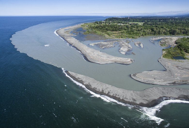 At the mouth of the Elwha River, sediment spills into the Strait of Juan de Fuca. The material is rebuilding a natural shoreline as well as an ecosystem for insects, birds and fish. Seawalls, bulkheads and other such structures prevent that kind of rebuilding.  (Steve Ringman/The Seattle Times)