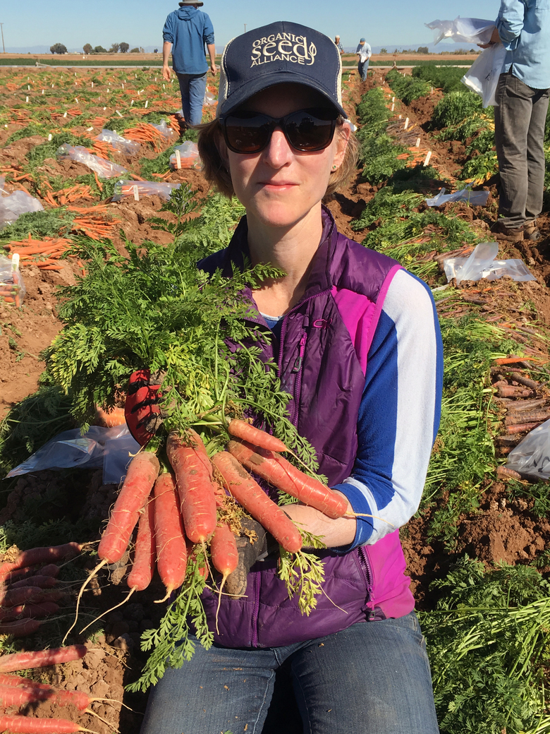 Micaela Colley shows off beautiful blunt red carrots at the USDA desert research station in El Centro, Calif. Organic Seed Alliance takes part in the evaluation of carrots each spring in El Centro, selecting carrots for the breeding and improvement efforts of the Carrot Improvement for Organic Agriculture project. (Courtesy Organic Seed Alliance)