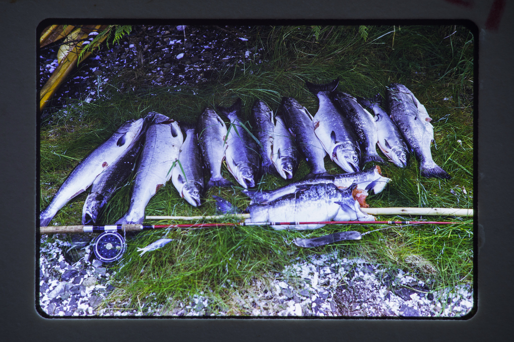 On the 1974 trip, the group was treated to a feast of salmon caught by Alan and Andy Dappen. (Courtesy Nate Dappen)