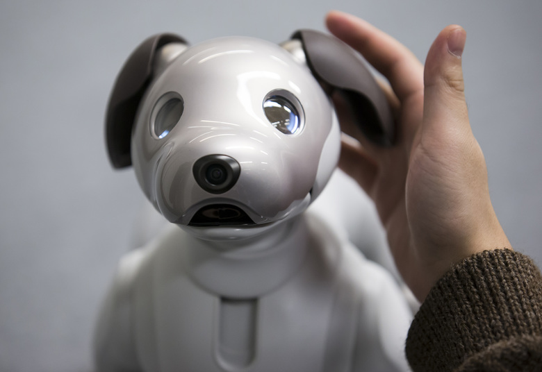 Sony's robotic dog Aibo is about the size of a Yorkshire terrier and costs $2,900. It went on sale in the U.S. last week. (Bloomberg photo by Tomohiro Ohsumi).
