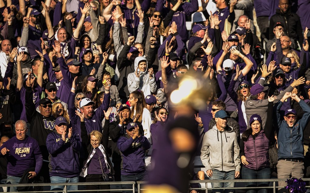 Husky fans cheer as Aaron Fuller scores a touchdown in the 4th quarter as the Huskies take on the Colorado Buffaloes at Husky Stadium on Saturday, October 20. (Rebekah Welch / The Seattle Times)