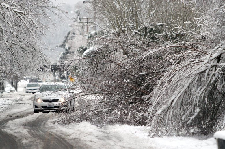 A car tries to negotiate its way around a fallen tree in Kent in January 2012. Weather experts advise travelers to do their research to lower the risk of weather-related delays. (John Lok / The Seattle Times, file)
