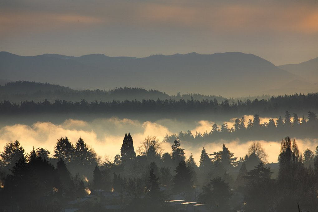 This view from Seattle's Beacon Hill neighborhood looks east toward Mercer Island and the Cascade Mountains on a foggy Tuesday morning. (Ellen M. Banner / The Seattle Times)
