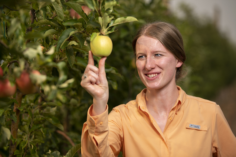 Sarah Kostick, a horticulture doctoral student at Washington State University, is racing to find a solution to fire blight, a devastating disease of fruit trees. (WSU)