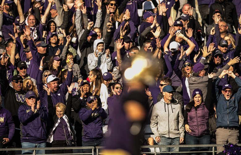 Husky fans cheer as Aaron Fuller scores a touchdown in the 4th quarter as the Huskies take on the Colorado Buffaloes at Husky Stadium on Saturday, October 20. 208211