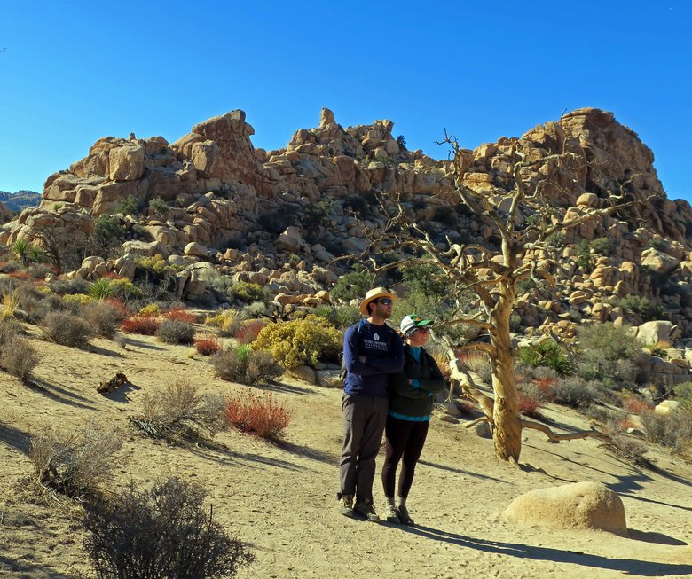 Hikers take in the scene on the Hidden Valley trail at Joshua Tree National Park. (John Nelson / Special to The Seattle Times)