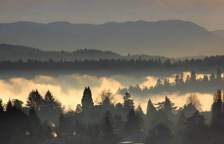 View from Seattle's Beacon Hill neighborhood looking east towards Mercer Island and the Cascade mountain range on a foggy Tuesday morning, Tuesday, January 15, 2019. The weather on Wednesday is expected to be mostly cloudy and rain is predicted for the rest of the week. 209032
