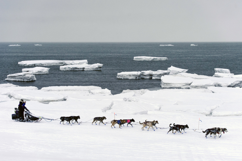 Jessie Royer passes icebergs in open water on Norton Sound as she approaches Nome, Alaska, in the Iditarod trail sled-dog race last month. The Bering Sea has seen record-low sea ice. (Marc Lester/Anchorage Daily News via AP, file)
