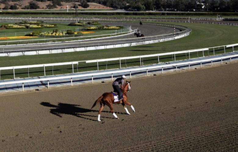 FILE – In this Oct. 30, 2013, file photo, an exercise rider takes a horse for a workout at Santa Anita Park with palm trees and the San Gabriel Mountains as a backdrop in Arcadia, Calif. A second horse in two days and 29th overall died at Santa Anita, Sunday, June 9, 2019, where management has chosen to continue racing for the rest of the current meet. (AP Photo/Jae C. Hong, File) LA717 LA717