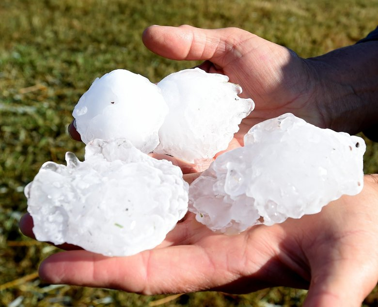 Betty Proue holds some of the large hail that damaged her house and outbuildings on Aug. 11, a Sunday evening, in Huntley, Yellowstone County, Montana. Huntley is about 15 miles northeast of Billings. The same storm also killed 11,000 birds at a wildlife area northwest of Billings. (Larry Mayer/The Billings Gazette via AP)