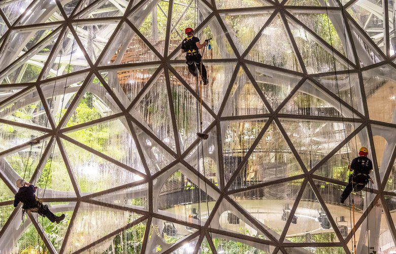 Reader's Lens photo by Steve Piccolo spiccolo333@gmail.com Photo taken 11/21/19 at Amazon Spheres, Seattle, WA 206.283.9726 Cleaning the outside of an Amazon Sphere, this trio was obviously enjoying the task. Taken with a DC-G9 camera with a 12-100mm lens at 44mm (88mm equiv), f/4, 1/20 sec (handheld), ISO 1600.  READER'S LENS FOR ONE TIME USE ONLY