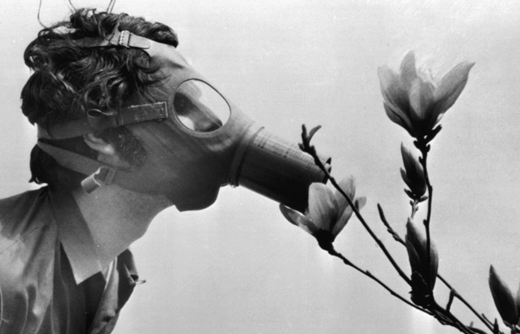 """In this April, 22, 1970 file photo, a Pace College student in a gas mask """"smells"""" a magnolia blossom in City Hall Park on the first Earth Day in New York. (The Associated Press)"""