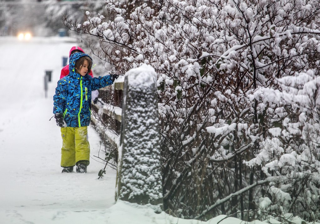 Kids play in the snow that was hard packed on West 84th Street in Edmonds Tuesday. (Steve Ringman / The Seattle Times)