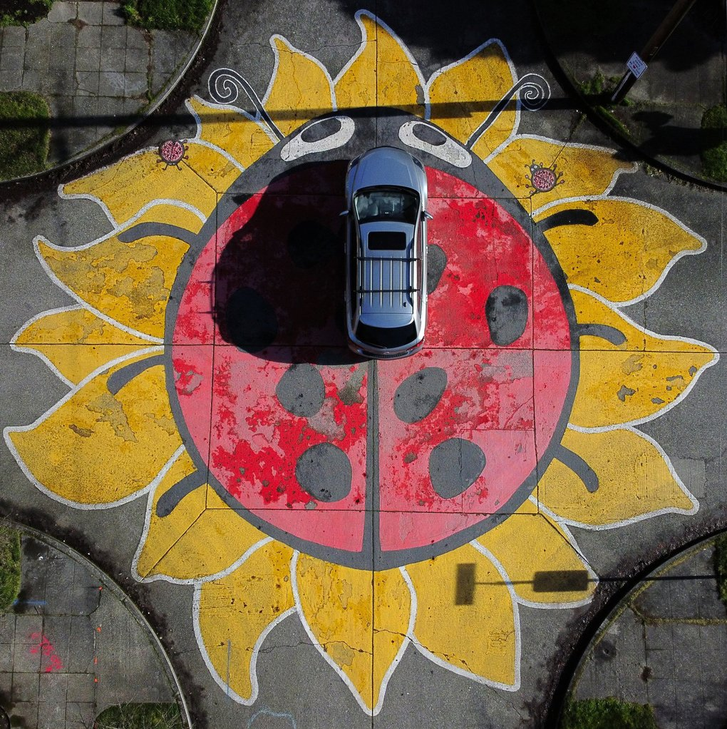 Sunlight casts a long shadow of a car passing through Wallingford's Ladybug-painted intersection on Sunday in Seattle. The artwork at North 49th Street and Burke Avenue North will get a fresh paint job from neighbors this summer, according to Joanne Young, who lives nearby. (Ken Lambert / The Seattle Times)