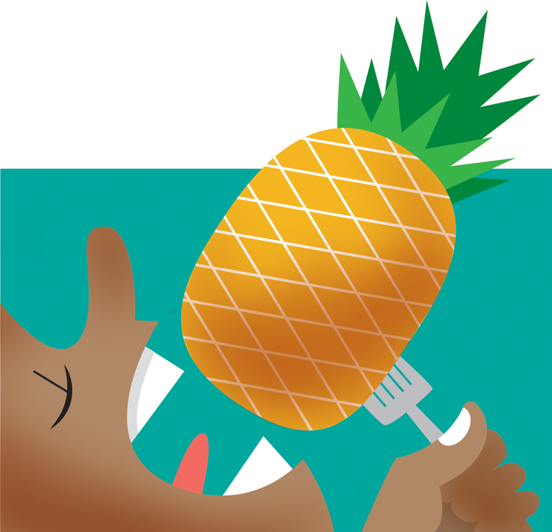 Be sure to eat plenty of pineapple in Hawaii. The experience will ruin the taste of all other pineapple back home, but it will be worth it. (David Miller / The Seattle Times)