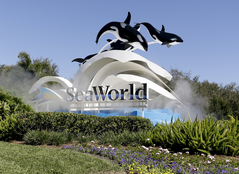 """FILE – This Jan. 31, 2017, file photo, shows the entrance to SeaWorld, in Orlando, Fla.  SeaWorld Entertainment Inc. on Tuesday, Feb. 11, 2020,  agreed to pay $65 million to settle a lawsuit in which the theme park company was accused of misleading investors over the impact the documentary """"Blackfish"""" was having on its bottom line. SeaWorld did not admit to any wrongdoing under the terms of the settlement filed with the U.S. Securities and Exchange Commission. .(AP Photo/John Raoux, File)"""