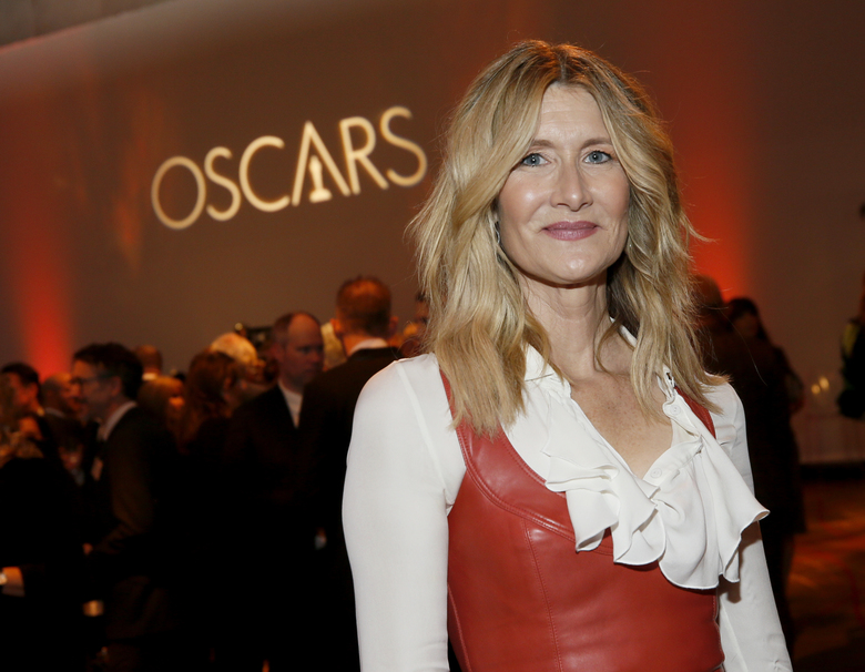 Laura Dern is seen at the 92nd Academy Awards Nominees Luncheon at the Loews Hotel on Monday, Jan. 27, 2020, in Los Angeles. (Photo by Danny Moloshok/Invision/AP)